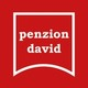Penzion David